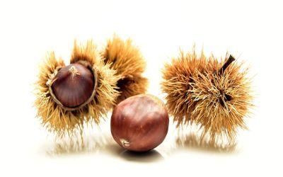 Châtaignes-pommes-poires